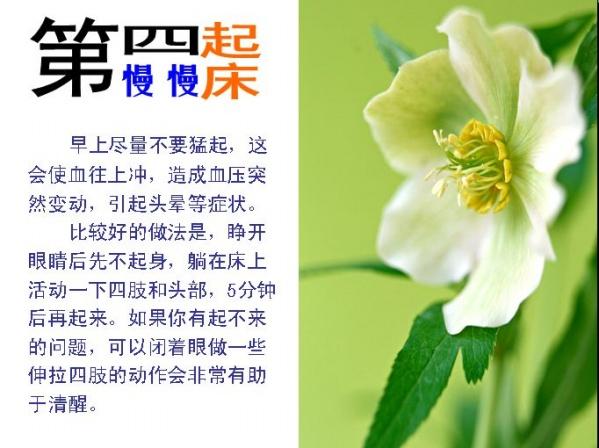 修身养性小智识 - 商机仙子 - 四川马边肥猪王饲料厂(集团)