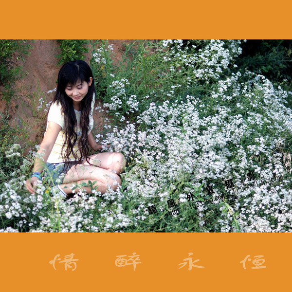 引用 【聽風攝影】情醉永恒(原) - 金梦圆婚庆 - 我的博客