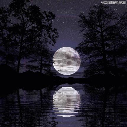 我们一起看月亮!