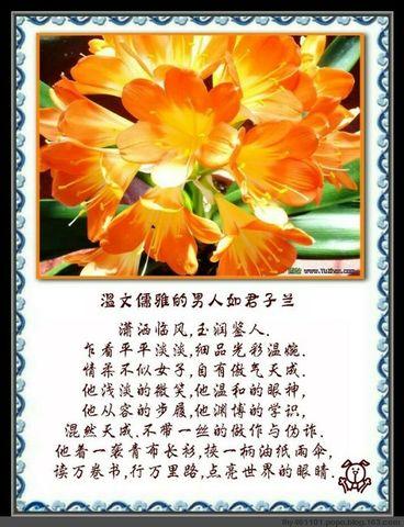 精美圖文欣賞20 - 唐老鴨(kenltx) - 唐老鴨(kenltx)的博客