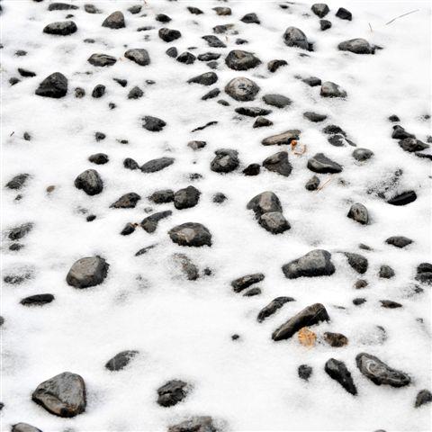 组图:今年的第一场雪开始融化了 - 潘石屹 - 潘石屹的博客