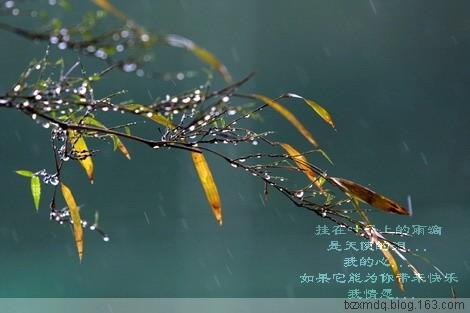 春雨绵绵(原) - 风中白帆 - 风中白帆