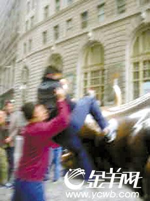 内地游客爬华尔街公牛雕塑合照引争议 - 麦田 - 麥田博客