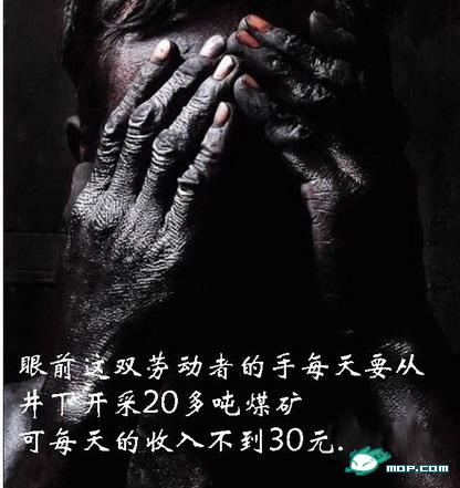 看了让人颤抖的照片 - wangxue7765 - 午夜雪