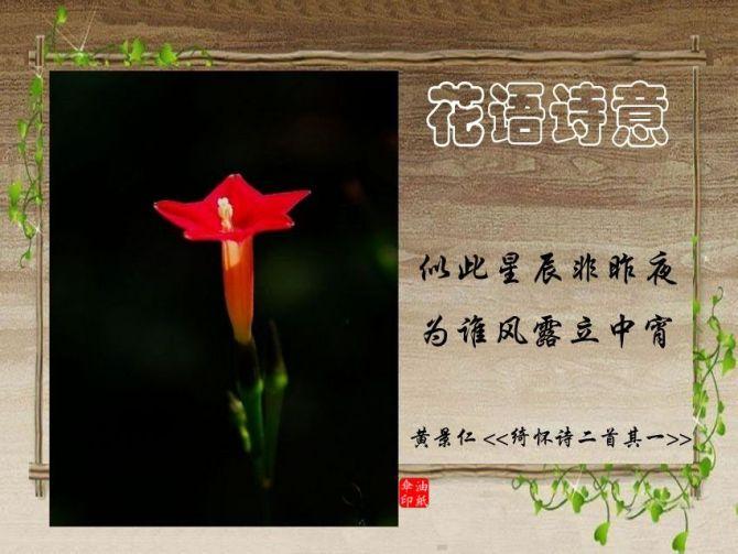 容忍是人生的佳境 - 厚德载福 - wdfu123@mig的博客