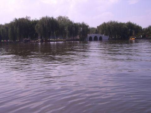 原创:青山依旧在,湖水不再绿 - 蜀茹芦花 - 芦   花   坊