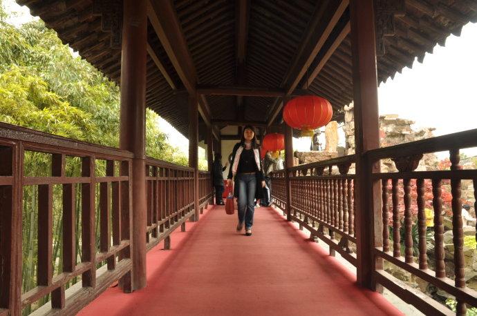 扬州个园印象 - 陶东风 - 陶东风