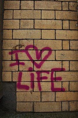 Welcome to life Honey - 姜乙乙 - Mythos und Wahrheit
