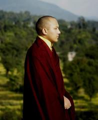 第十七世大宝法王噶玛巴《希望》  - 果华 - 噶玛卓玛-guohua