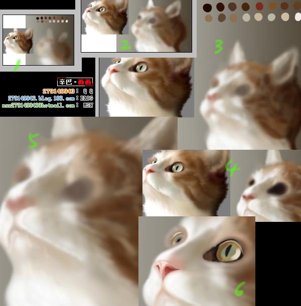开心咯,猫猫越画越有进步啦 - 辛巴 - 【辛巴】