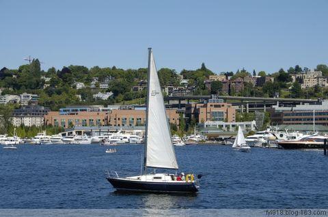 到西雅图观光(18):水域中的游艇 - 阳光月光 - 阳光月光