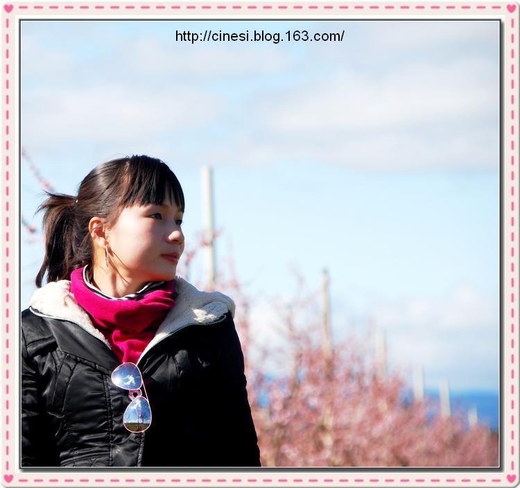 (原创1P)我的2008我的三十 - 风和日丽(和佬)  - 鹿西情结--和佬的博客