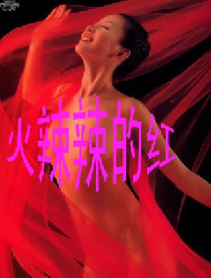 你爱上太阳的女人(疏勒河的红柳原创) - 疏勒河的红柳 - 疏勒河的红柳