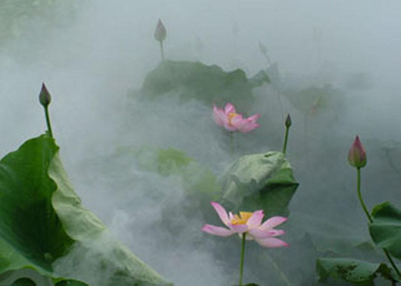 2011年01月29日 - 方程 - qianbaiwanren的博客