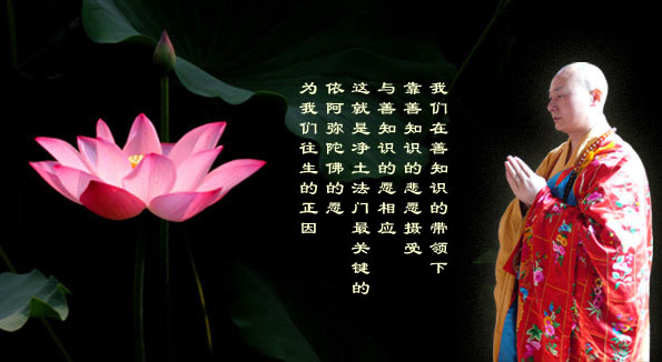 传喜法师《沉没的大脑》 - 春兰之馨香 - 香光庄严卍念佛三昧