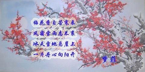 【原创】咏梅 - 大海胸怀 - 大海胸怀的博客