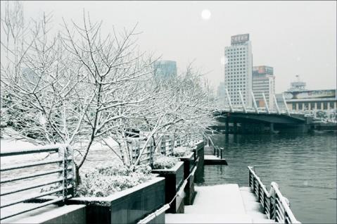 (月满西楼征文)[原创]现代诗 第一场雪 - 春羽 - 春羽sunxiping诗苑