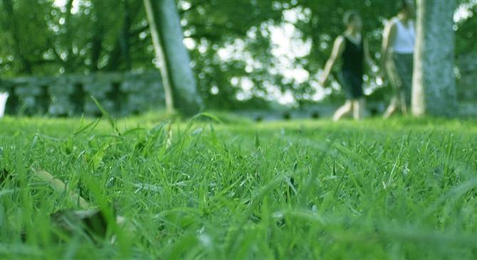 蓝天,云彩,青山,绿水,炎热夏季~ - 窗外 - lengyuefengzhu 的博客
