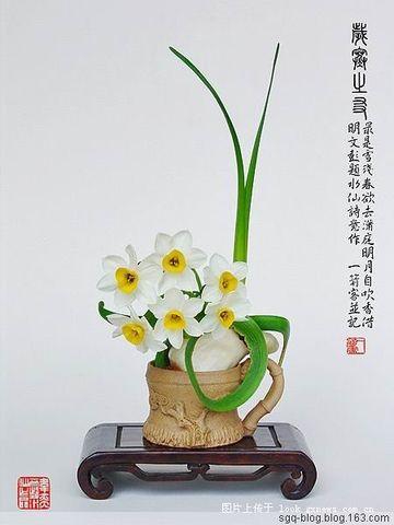 水 仙 美 图 - 妙心吉祥 - 妙心吉祥 网易博客