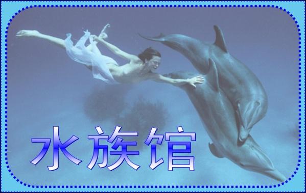 ☆引用 水族馆 - 学 海 - XVE HAI BLOG