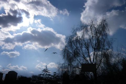 昆明.蓝色阳光 - 明明 - liangmingming博客-光影之河