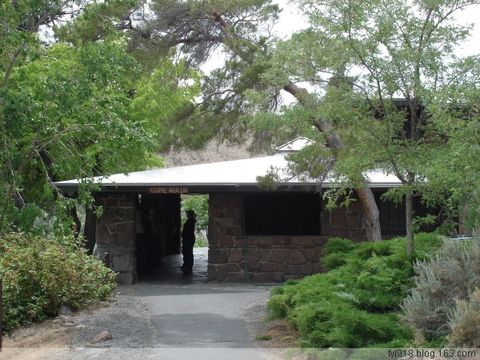 到西雅图观光(16):银杏化石森林公园 - 阳光月光 - 阳光月光