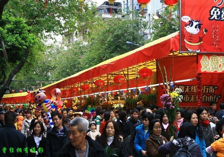 【原创摄影】   广州天河、越秀花市 - 曾经拥有 - 我的摄影花园
