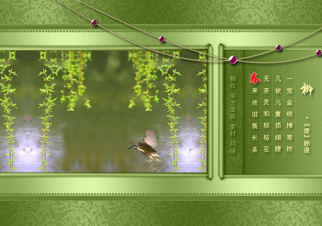 柳韵——我在诗词里见过你(原) - 雪卉 - 麦田中的呓语