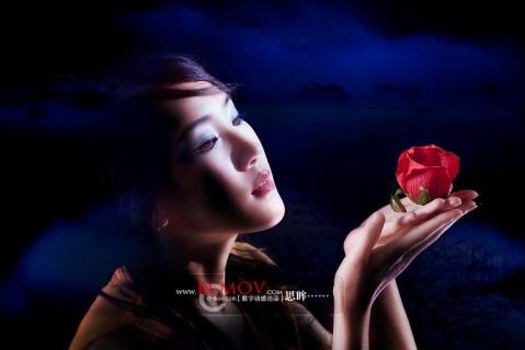 原创-现代-《孤独的玫瑰》文/光明之子《征文》 - 光明之子 - 光明之子的博客