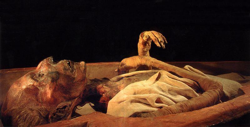 1237年)是古埃及第十九王朝的法老.在他的   时代,来自小亚细亚的图片