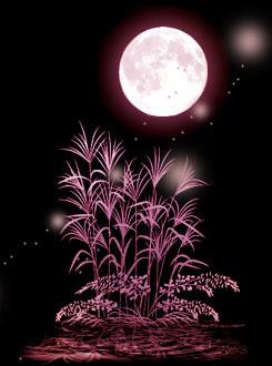 浪漫月色 - 天爱 -