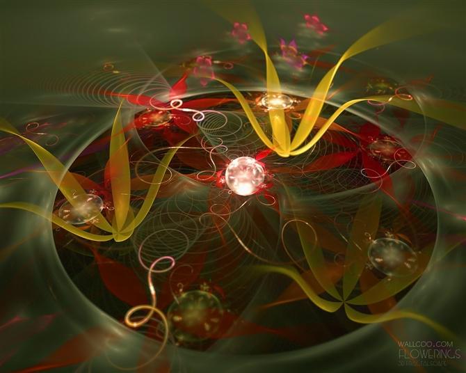 色彩斑斓的分形艺术 - 理睬 - 理 睬