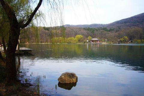 四季紫霞湖 - 江南风 - 江南风