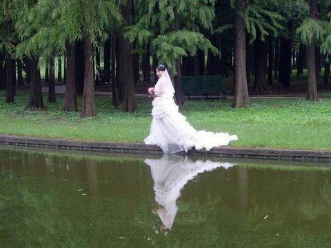 【博客文化艺术节】秋 - 抒琴 - 鱼儿的世界