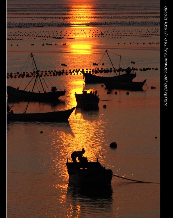 [原创]  赶拍夕阳 - 海狮 - 大连海狮的博客