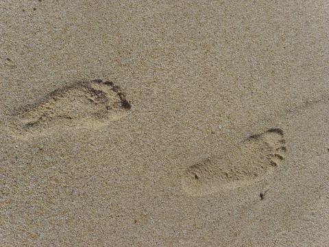 海---风(原创)  - 梦景红花 - 梦景红花的博客