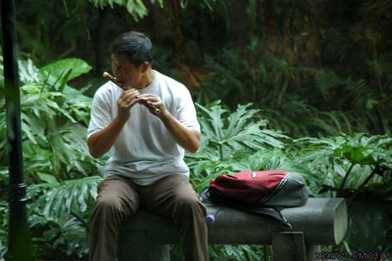qy20050801 广州周边游:鸟枪换炮暨白云山小游 - 天外飞熊 - 天外飞熊