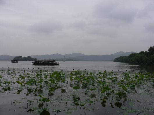 今天在西湖拍的照片 - 蔡骏 - 蔡骏的博客