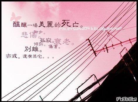用空虚的生命铭记一生(原) - ぃ風葉飄零ぅこ - ぃ風葉飄零ぅこ