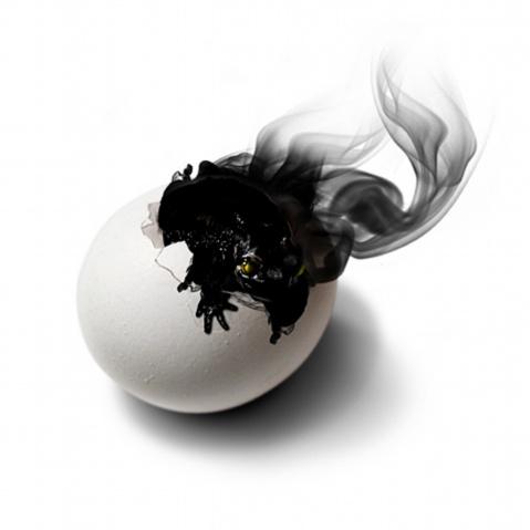 鸡蛋创意广告欣赏 - 五线空间 - 五线空间陶瓷家饰