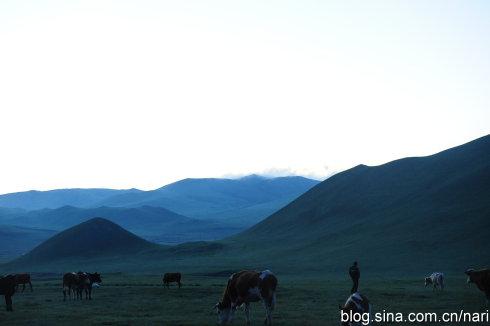 内蒙古中部自驾游:牧场的早晨
