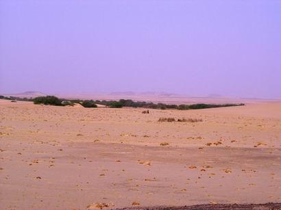走进撒哈拉 - 淡淡云天 - 淡淡云天