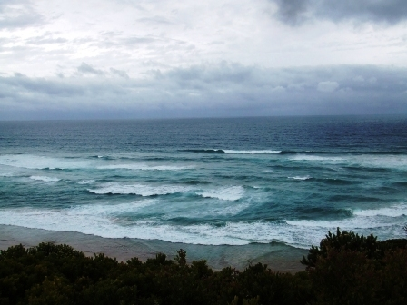 The Great Ocean Road - 老虎闻玫瑰 - 老虎闻玫瑰的博客
