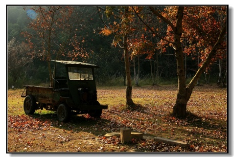 2009年第一组片---深冬印象(灵溪) - 苦乐年华 - 苦乐年华的博客