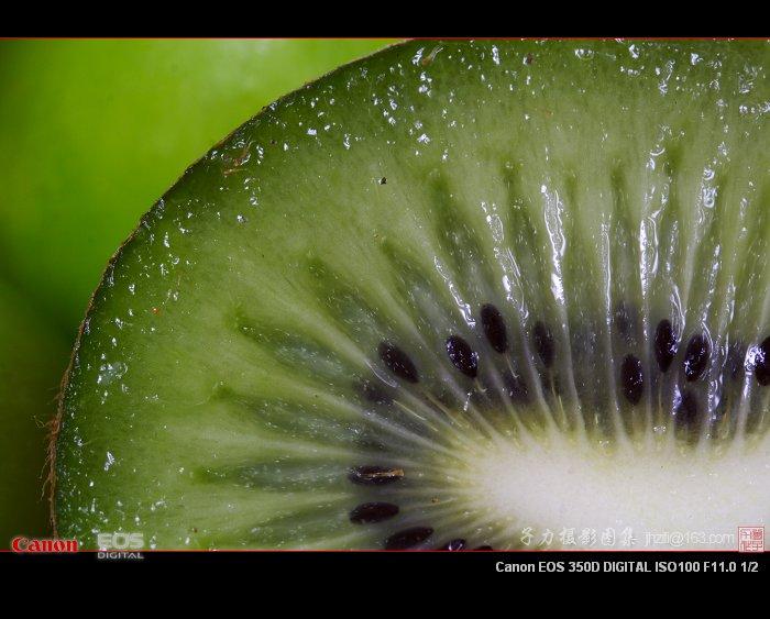 [原创] 超微距摄影—猕猴桃 - 子力 - 子力摄影图集