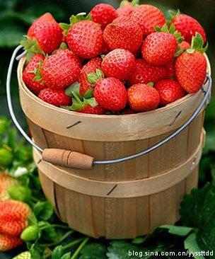 10种水果调理法让女人年轻10岁