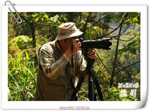 【苍鹭拍摄记】——摄影人的风采 - xixi - 老孟(xixi)旅游摄影博客