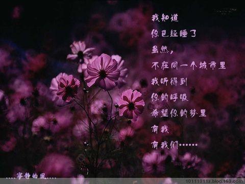 (原创)窗花 - 渫橆潇湘 - 渫橆潇湘的博客