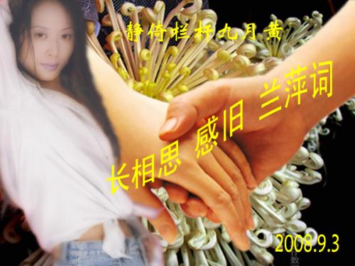 【词】玉楼春 * 冷落菊黄词梦落 - 雨忆兰萍 - 网易雨忆兰萍的博客