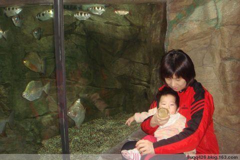 美丽海世界 - 吾家宝贝 - 刘刘的小屋